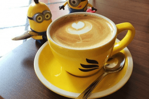 Best Coffee in Delhi NCR